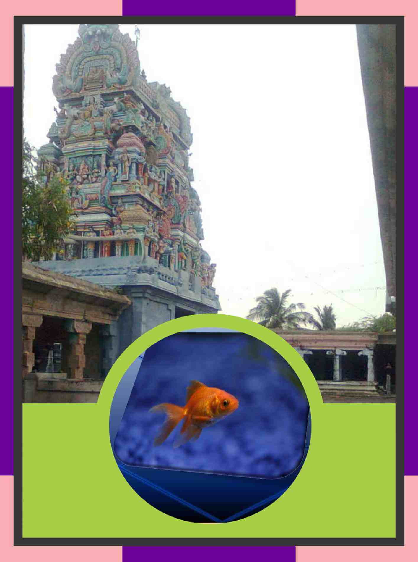 Karukudi - Kailasanathar Temple Spl Parihara Puja for Revathi Star