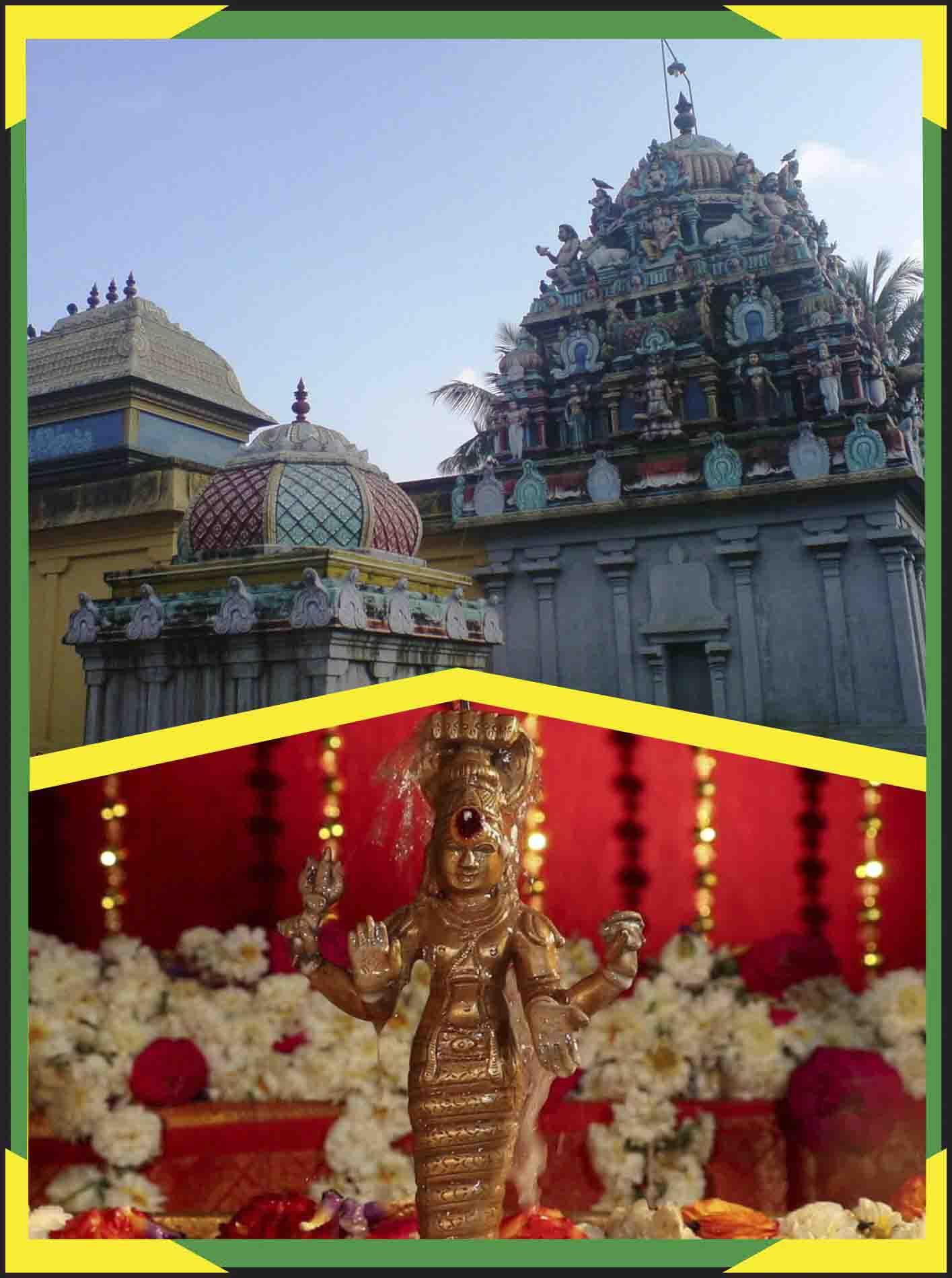 Keezha Perumpallam -Special Parihara Puja for Kethu