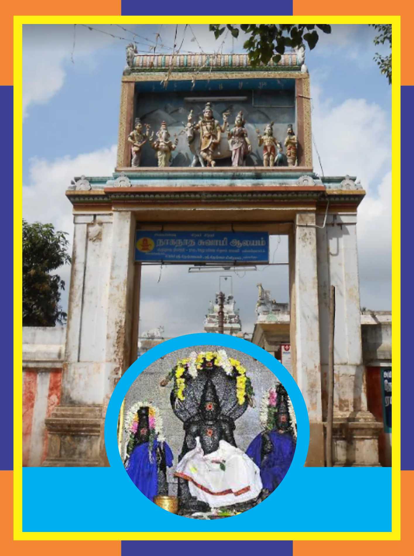 Pamani - Naganathar Temple Abishekam for Mesha Rasi