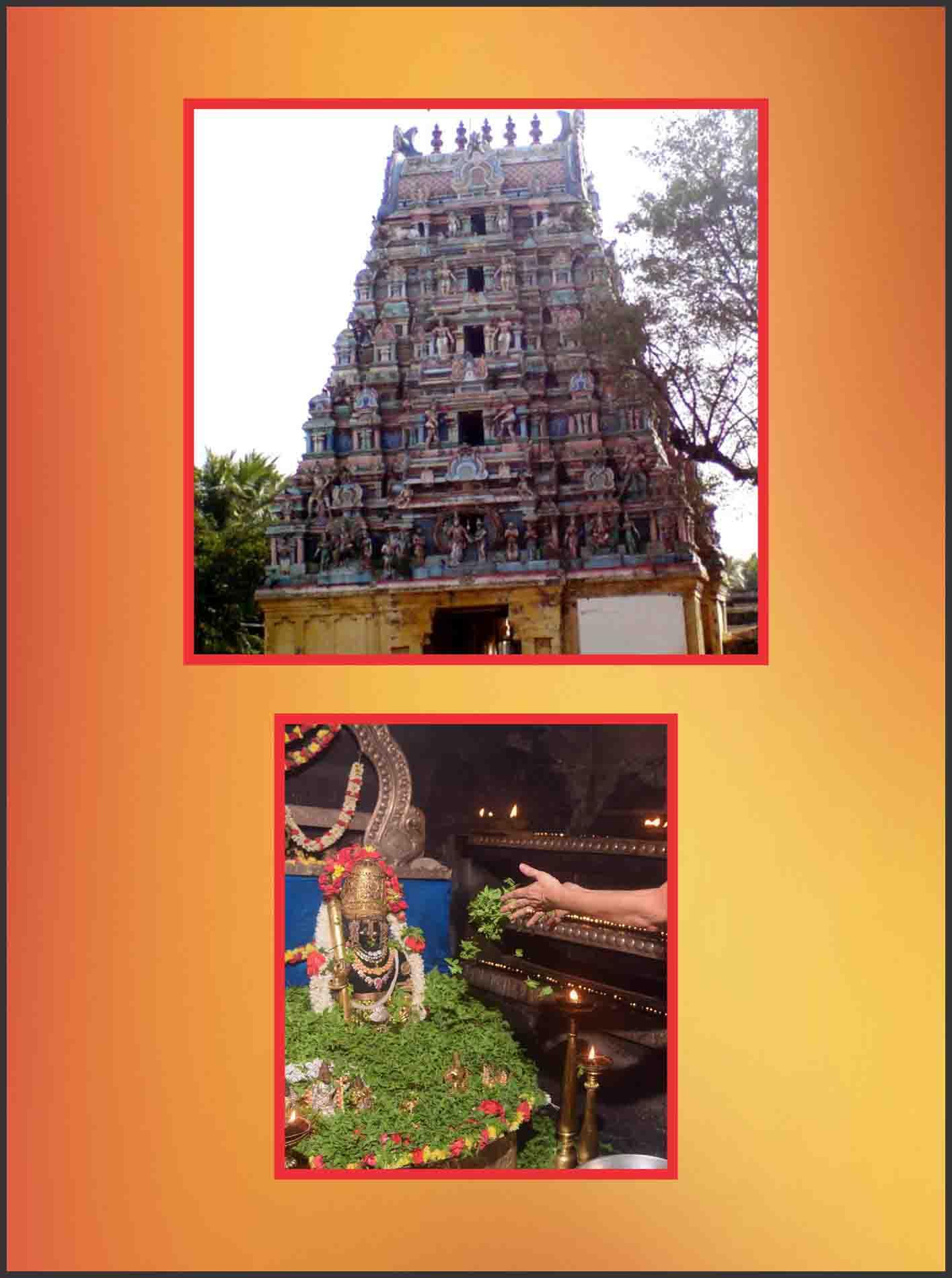 Thirukollikadu - Sri Agneeswara Swamy Temple Spl Parihara Puja for Thiruvathirai Star