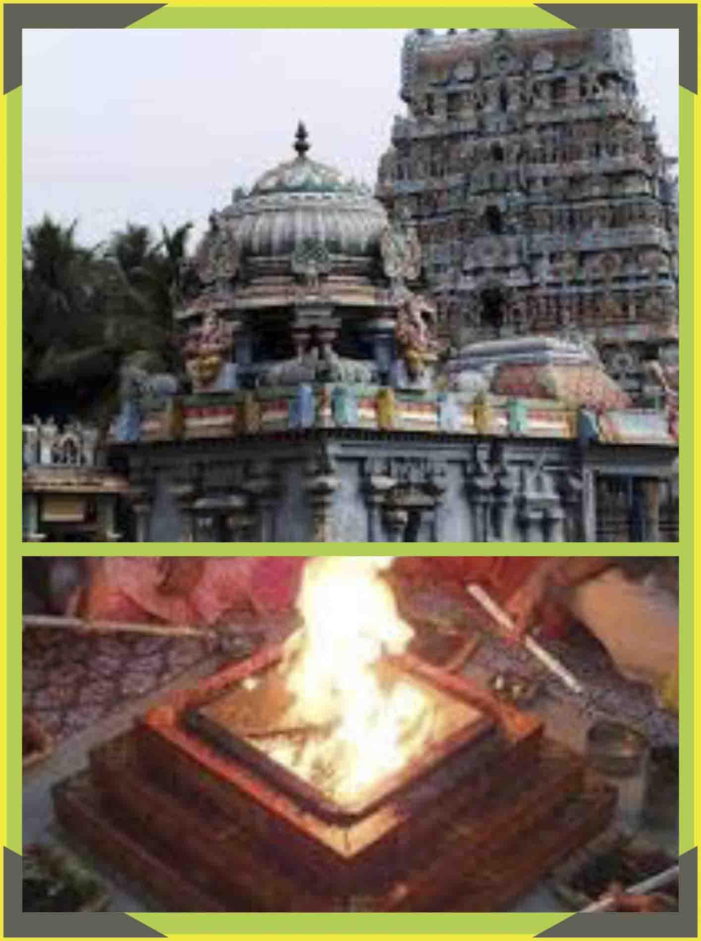 Thirunageswaram - Rahu - Parihara Homam