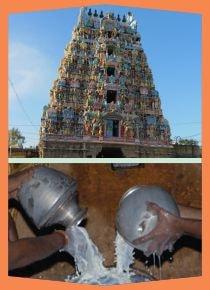 Alangudi- Special Parihara Puja for Guru