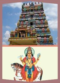 Kanchanur-Special Parihara Puja for Sukran