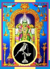 Madurai – Meenakshi Silver Parrot Puja