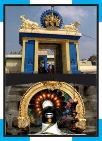 Perumpakkam - Soleeswarar Temple Abishekam for Nervus Issue