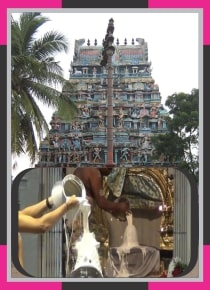 Thiruthuraipoondi – Piravi Marundheeswarar Temple Spl Abishekam for Ashwini Star
