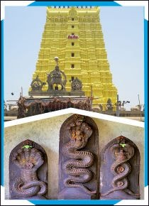 Rameswaram - Sarpa Shanthi Puja- Naga Prathista