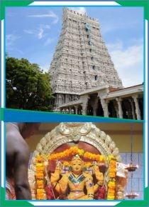 Thiruchendur-Murugan-Santhana Kappu for Shanmugar
