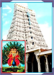 Pazhamuthircholai - Subramanya Swamy Temple Special Puja for Lord Murugan