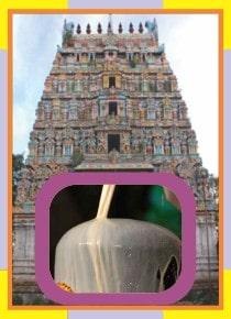 Vazhyvoor – Veeratteswarar Temple Spl Abishekam for Kettai Star