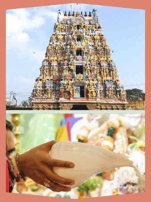 Alangudi- Guru-Abishekam for Guru (Moolavar)
