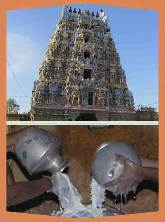 Alangudi-Guru-Abishekam for Swamy & Ambal