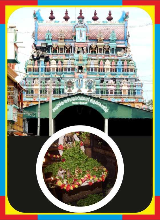Alwar Thirunagari– Aadhinadha Perumal Temple Spl Puja for Perumal and Theyar