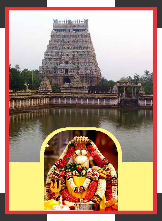 Chidambaram Natarajar – Rudra Abishekam