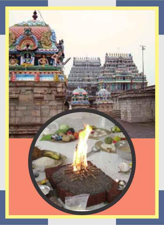 Enkan - Adi Narayana Swamy Temple Spl Homam for Mirugaseersham Star