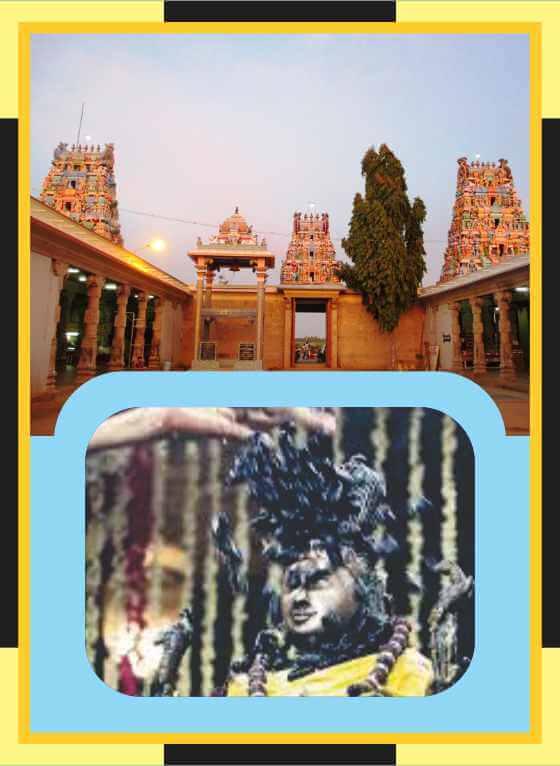 Kodumudi – Magudeswarar Temple Abishekam for Avittam Star