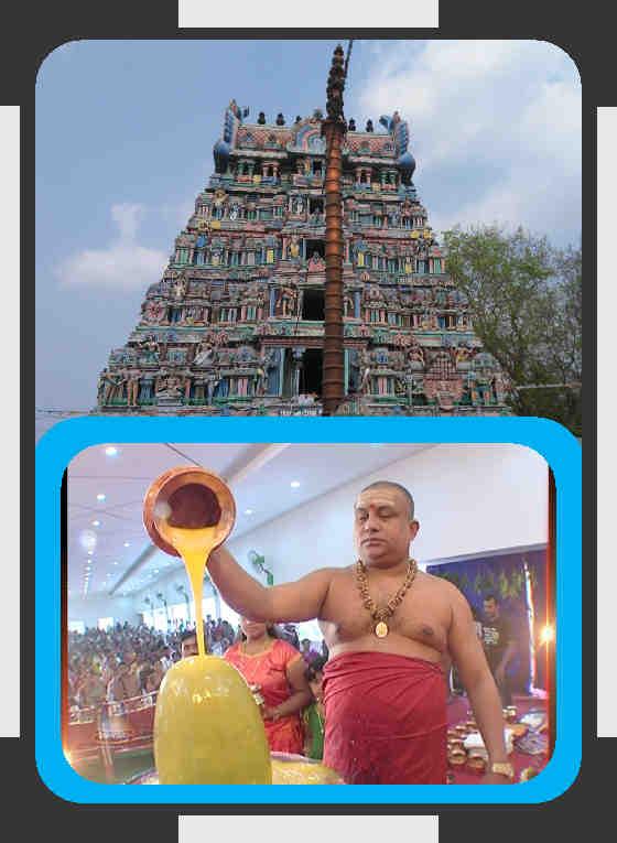 Nallur - Sri Kalyanasundareswarar Ghee Abishekam