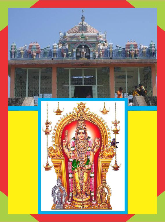 Palani Murugan - Spl Puja