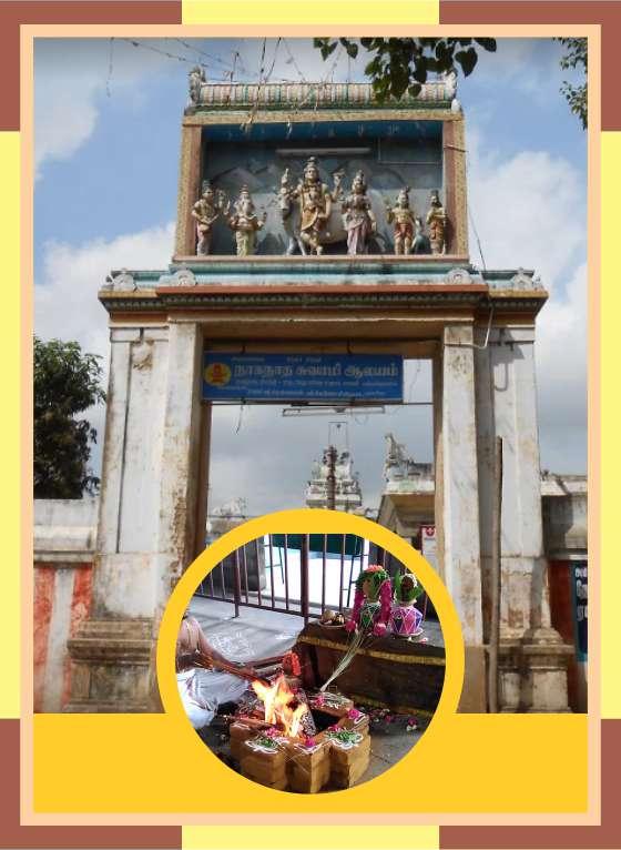 Pamani - Naganathar Temple Homam Sarpa Shanti Homam