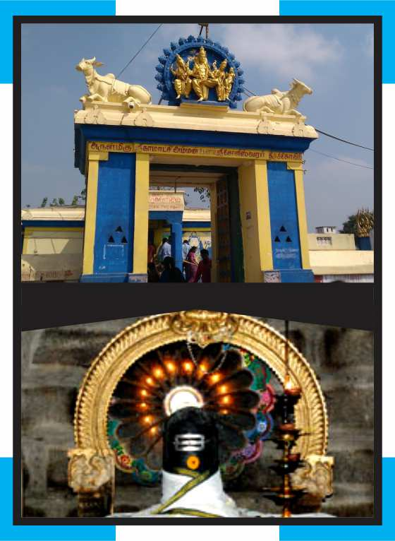 Perumpakkam - Soleeswarar Temple Abishekam for Nervus Issue