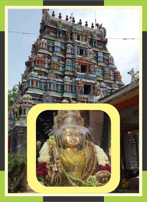 Thirukkattuppalli – Thiruvaneswarar Temple Swamy Ambal Abishekam for Poorattathi Star