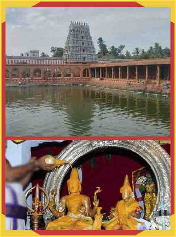 Thirunageswaram - Rahu - Parihara Puja & Abishekam