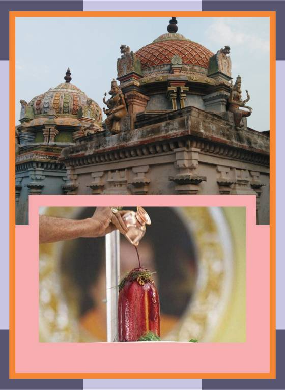 Thirunthudevankudi – Karkadeswarar Temple Abishekam for Cancer Relif