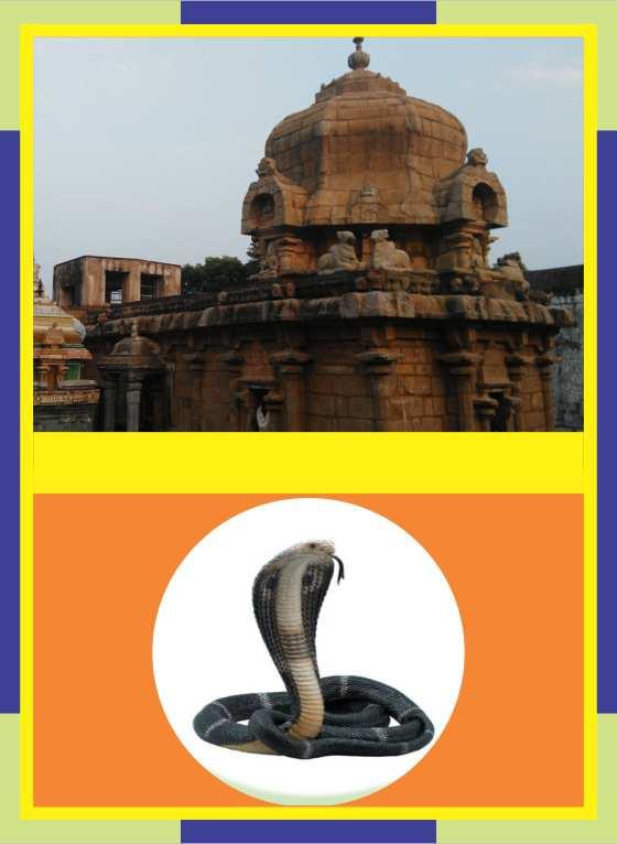 Thirunthudevankudi – Karkadeswarar Temple Spl Parihara Puja for Ayilyam Star