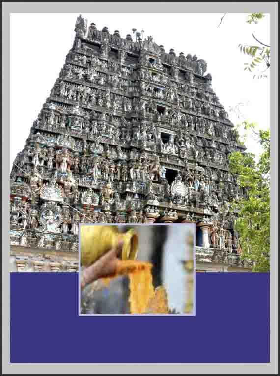 Vaitheeswaran Koil-Special Parihara Puja for Angarahan